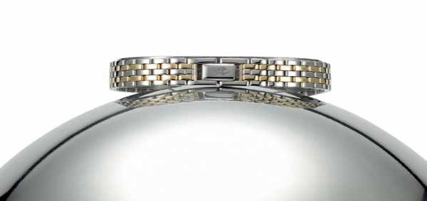 watch bracelet ZRC Fantaisie 2636583 10/14mm